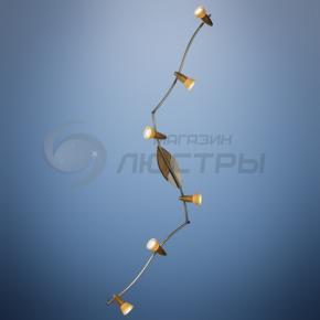 фото Светильник настенно-потолочный Lord III 5443-6