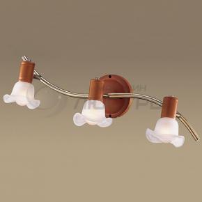 фото Светильник настенно-потолочный Trum 1967/3W