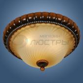 фото Светильник потолочный Alta WE343.03.627