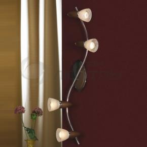 фото Светильник настенно-потолочный Cisterino LSQ-6409-04