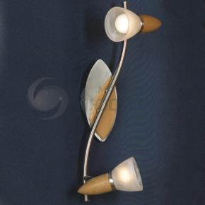 фото Светильник настенный Cisterino LSQ-6411-02