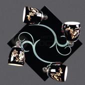 фото Светильник потолочный OML-22312-04