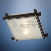 фото Светильник настенно- потолочный Edison 48324-2