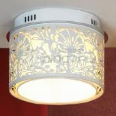 фото Потолочный светильник Vetere LSF-2307-04