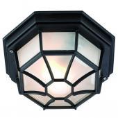 фото Уличный настенно-потолочный светильник NINA 100394