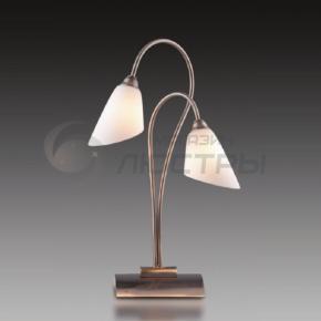 фото Настольная лампа  Hedys 1373/2T