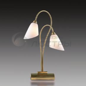 фото Настольная лампа  Hedys 1374/2T